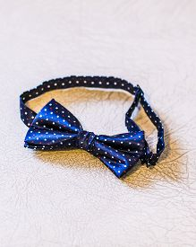picture of bowing  - Beautiful bow tie - JPG