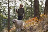 Woman Walking Maremma Dog In The Trees