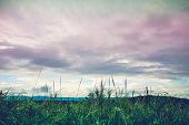 Landscape Of Beautiful Nature Against Vivid Sky And Cloudy Background. poster