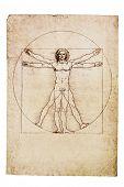 picture of leonardo da vinci  - Da Vinci - JPG