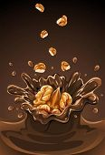 walnut fruit falling into the chocolate with splash - vector illustration