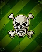 skull with skeleton bones on grunge military background vector illustration