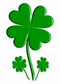 Lucky Four-Leaf Clover