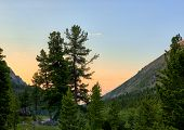 Early Morning In Dark Coniferous Taiga. Eastern Siberia. Sayan Mountains. Russia poster
