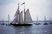 foto of tall ship  - Blue Nose two tall Ship Norfolk Virginia - JPG