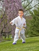 picture of karate kid  - Young boy practicing martial arts outside in spring - JPG
