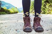 Hiking Boots Close-up. Girl Tourist In Boots With Daisies poster