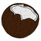 Coconut Icon. Vector Illustration Of Coconut Nut. Hand Drawn Cartoon Coconut. poster