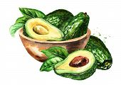 Bowl With Ripe Avocado. Hand Drawn Watercolor Illustration, Isolated On White Background poster