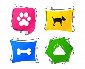 Pets Icons. Dog Paw And Feces Signs. Clean Up After Pets. Pets Food. Geometric Colorful Tags. Banner poster