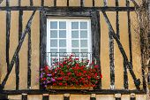 Le Mans, Window With Flowers