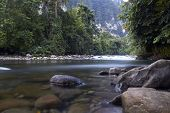 stock photo of gunung  - jungle river in the Gunung Mulu National Park of Borneo - JPG
