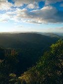Parque Nacional de Springbrook