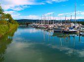 The Harbor In Port Douglas, Australia