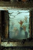stock photo of spiderwebs  - Photo of zombies outside a window that is covered with spiderwebs and filth - JPG