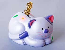 picture of obeah  - cat moneybox with dollar sign on it - JPG