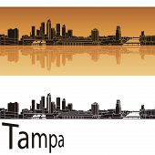 image of florida-orange  - Tampa skyline in orange background in editable vector file - JPG