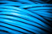picture of cat5  - close up of network cables - JPG