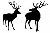 stock photo of mating animal  - 2 male deer silhouettes with big horns on a white background - JPG