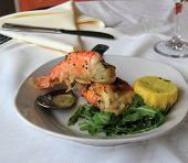 Fresh baked shrimp oreganata with lemon in netting