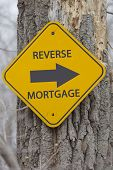Reverse Mortgage Arrow Sign On Tree