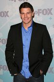David Boreanaz at the 2011 FOX Winter All-Star Party, Villa Sorriso, Pasadena, CA. 01-11-11