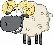 Smiling Black Head Ram Sheep Cartoon Mascot Character