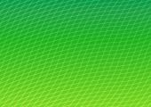 Curved Grid Background