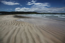 image of curio  - The quiet beach at Curio bay a haven for surfers and dolphins - JPG