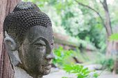 Buddha In Thailand Stucco Nature
