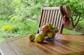 Apples In Glass Dish On Bower Table In Garden