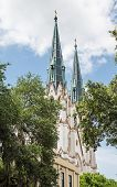 Classic Steeples Beyond Trees