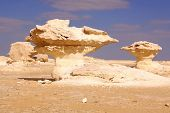 White Desert Statue