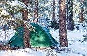 Tent in winter  forest,Yosemite NP,USA