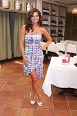LOS ANGELES - JUN 21:  Heather Tom at the Leading Ladies of Daytime Luncheon 2014 at the Fig & Olive