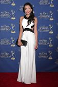 LOS ANGELES - JUN 20:  Hayley Ogas at the 2014 Creative Daytime Emmy Awards at the The Westin Bonave