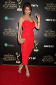 LOS ANGELES - JUN 22:  Lisa LoCicero at the 2014 Daytime Emmy Awards Arrivals at the Beverly Hilton