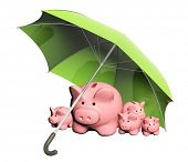 Insurance of bank contributions. Piggy banks and umbrella. Isolated on white background