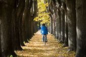 Cycling In The Autumn.
