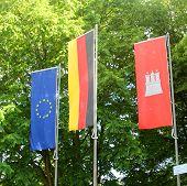 The European, German And Hamburg Flags
