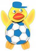 Argentine Soccer Fan