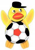 German Soccer Fan