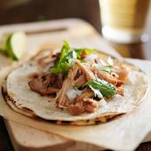 stock photo of tacos  - authentic mexican tacos with carnitas - JPG