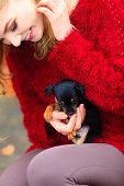 pic of petting  - Pets and people pet adoption - JPG