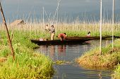 Employment In Inle Lake,Myanmar.