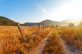 stock photo of sunrise  - fence on the field a farm yellow grass at the farmer - JPG