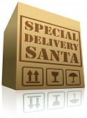 special delivery Santa Christmas present surprise package shipping from online web shop order cardboard box with text
