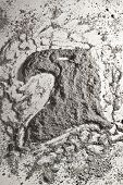 picture of ashes  - Eagle head made of grey scattered ashes - JPG