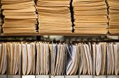 pic of file folders  - Shelf with file folders in a archives - JPG
