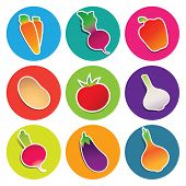 Set of vegetable icons in the circles: beetroot, carrot, eggplant, garlic, onion, paprika, potato, radish, tomato. Vector illustration.